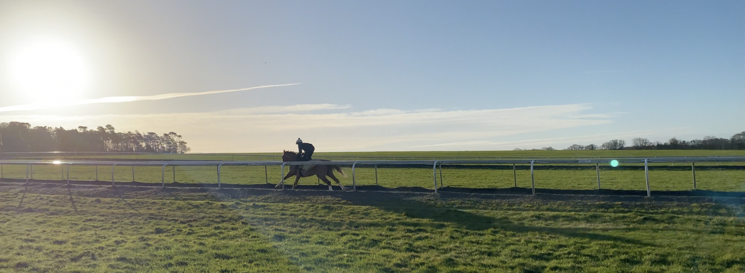 The view, the horse, the sunshine… the anticipation!