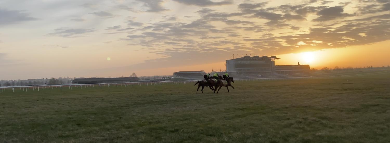 Gift Of Kings on Racecourse Side…
